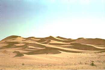 Complex Dunes